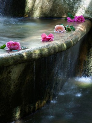 Krone fountain.roses