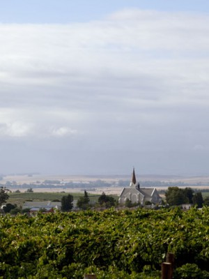 Riebeek Cellars_005